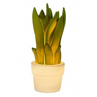 LUCIDE SANSEVIERIA Table